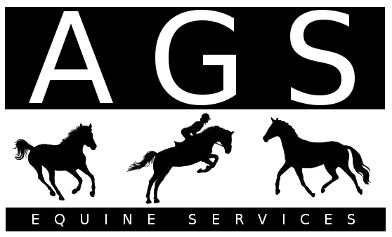 Looking for a freelance groom? Find experienced grooms here   BGA