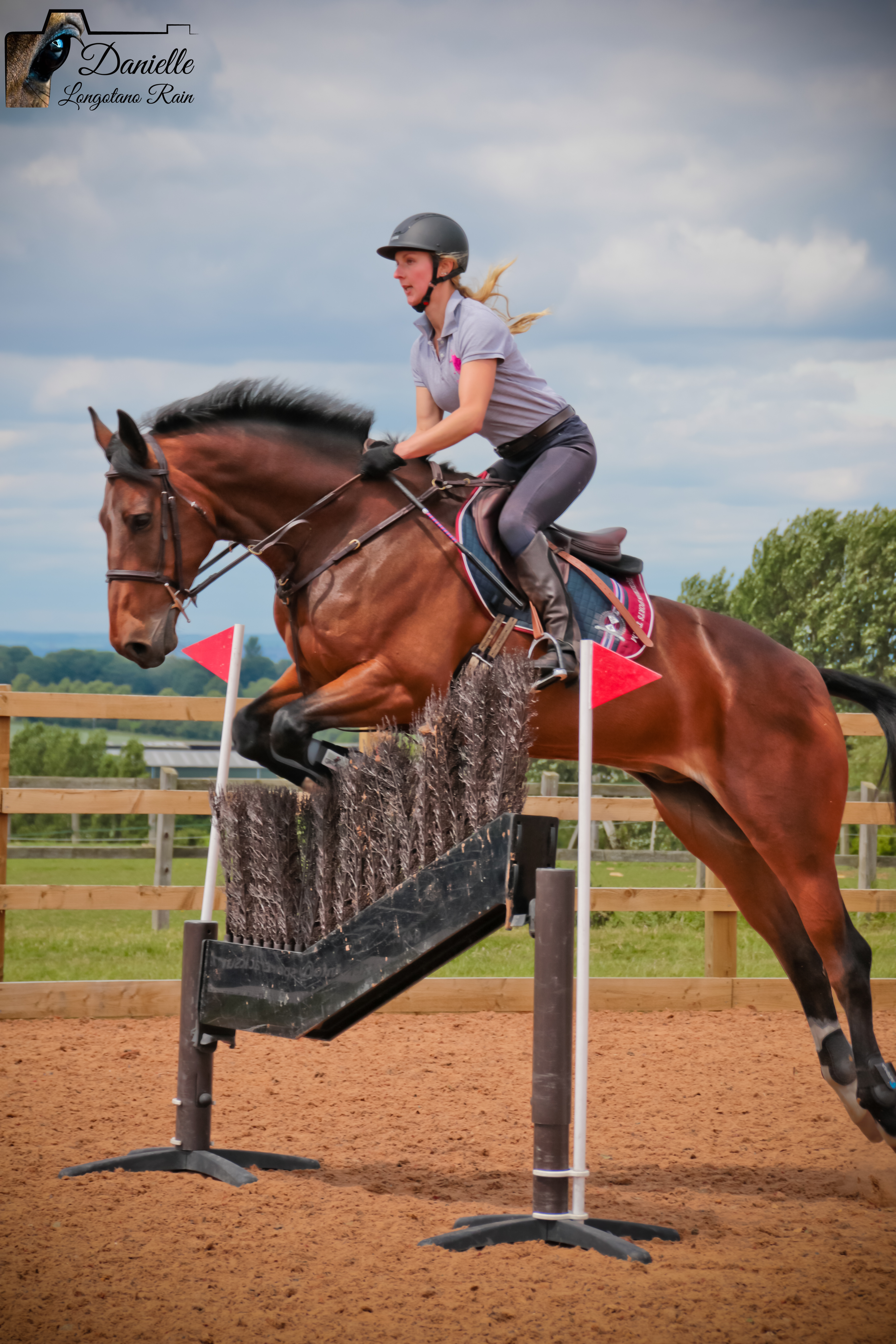 Looking for a freelance groom? Find experienced grooms here | BGA