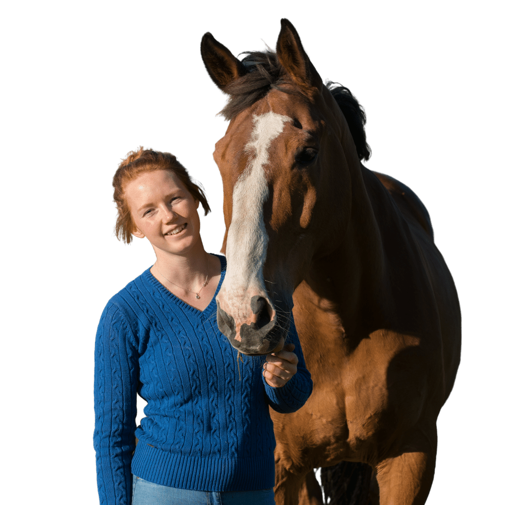 An equine Traineeship groom