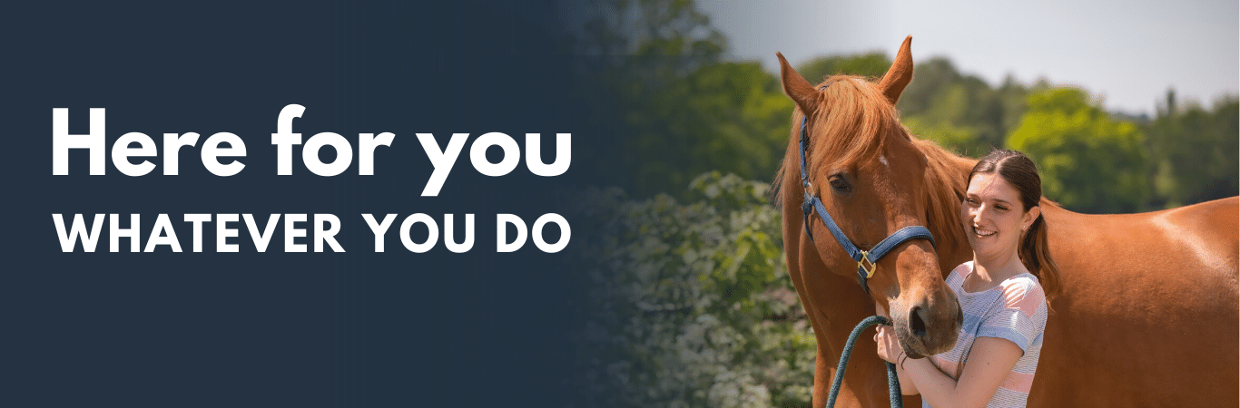 BGA members are grooms who work with horses