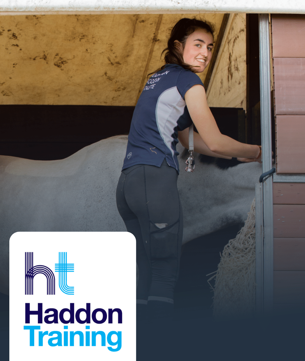 Groom on an equine horse care apprenticeship