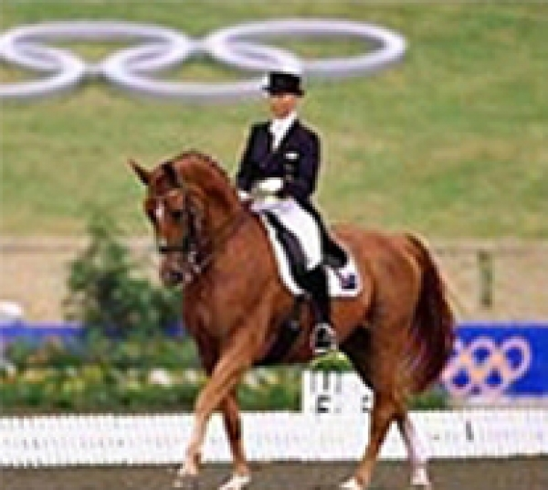 Career in dressage with British Grooms Association