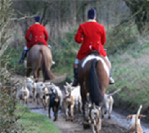 Career in hunting with British Grooms Association