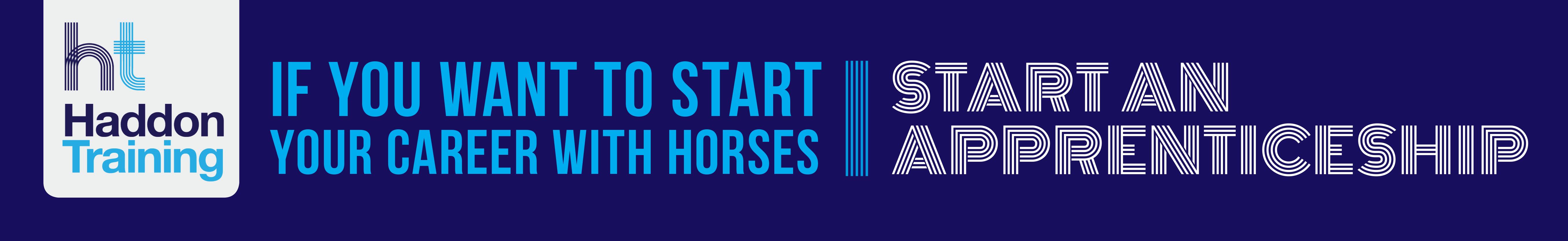 List of Vacancies: Find Your Perfect Equestrian Job | Grooms