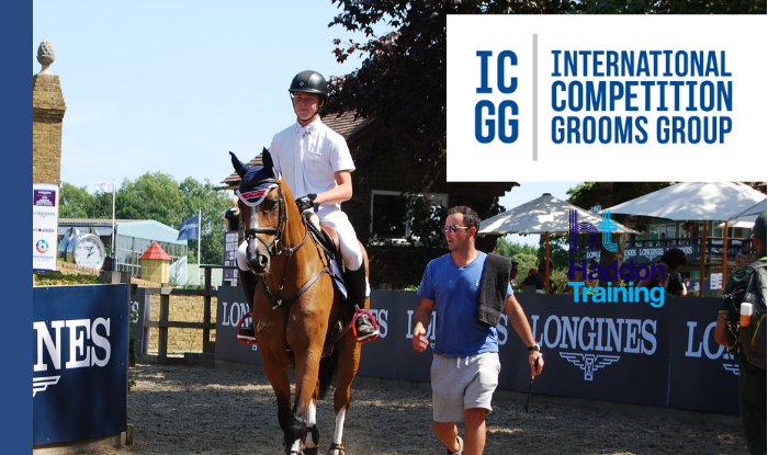 International Competition Grooms Group launched